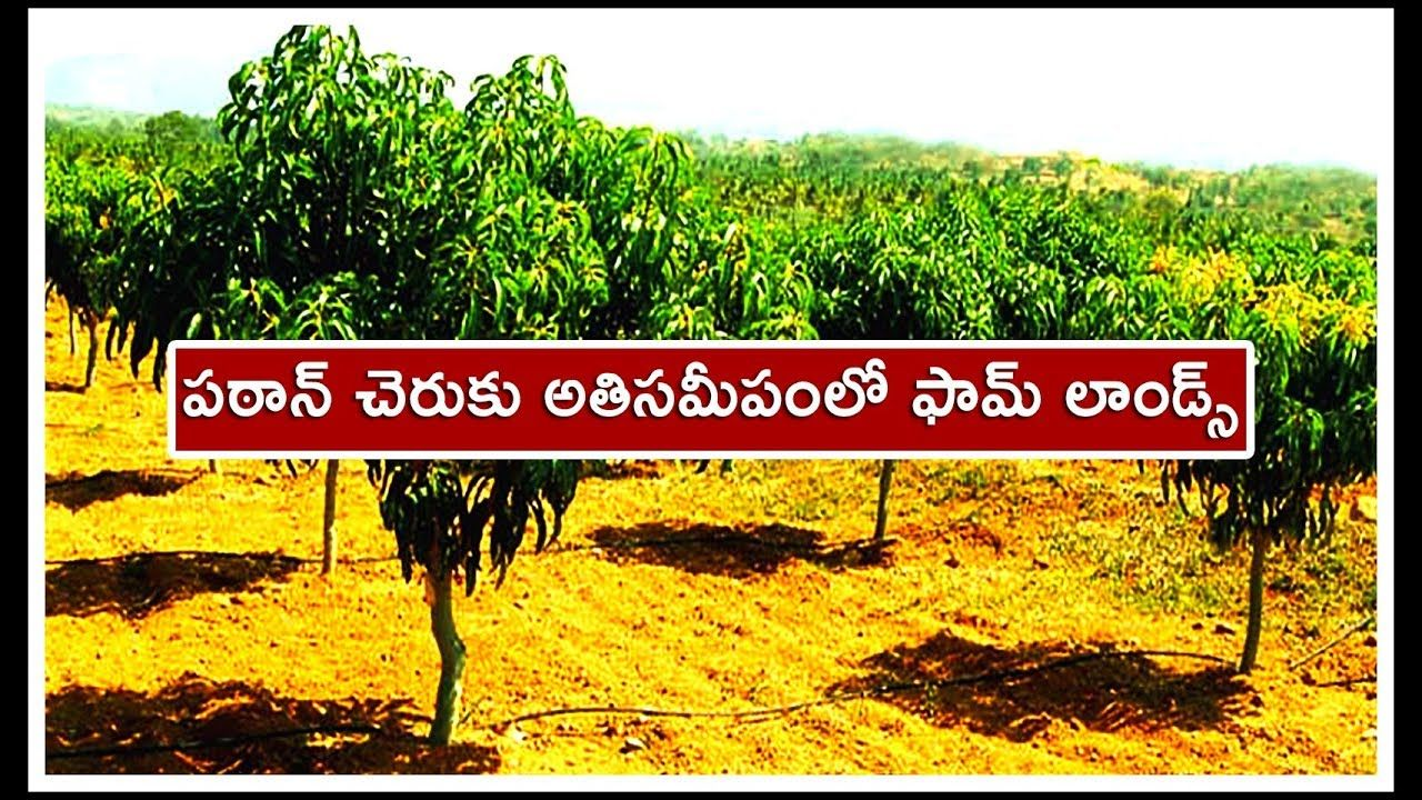 Best Investment on Farm Lands Near Patancheru 7702546309