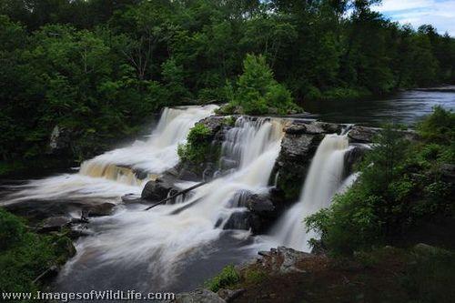 Resica Falls Located Near Marshalls Creek In The Poconos Of Pennsylvania Poconos Scenic Beautiful Landscapes