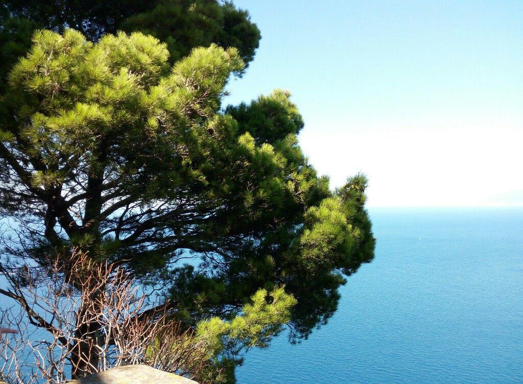 Capri landscape. My photo. No filter.  #Capri #Italy #sea #travel