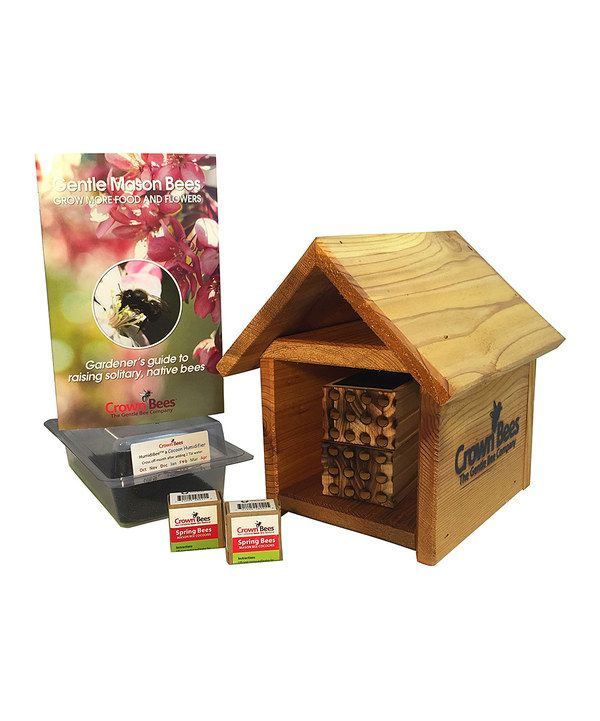 Look at this Spring BeeCabin & Mason Bee Set on #zulily today!