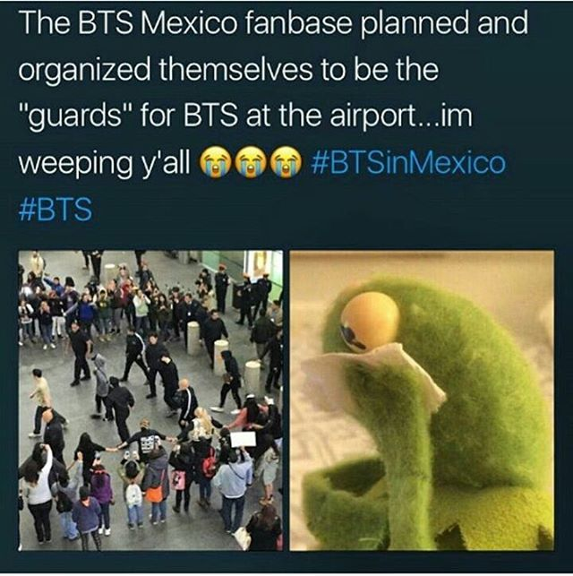 This is too cute. Seeing all these other armies being so supportive of bts makes me feel a little better about not being able to go to their concert. That's going to happen in my state. A few hours away. *is ded*