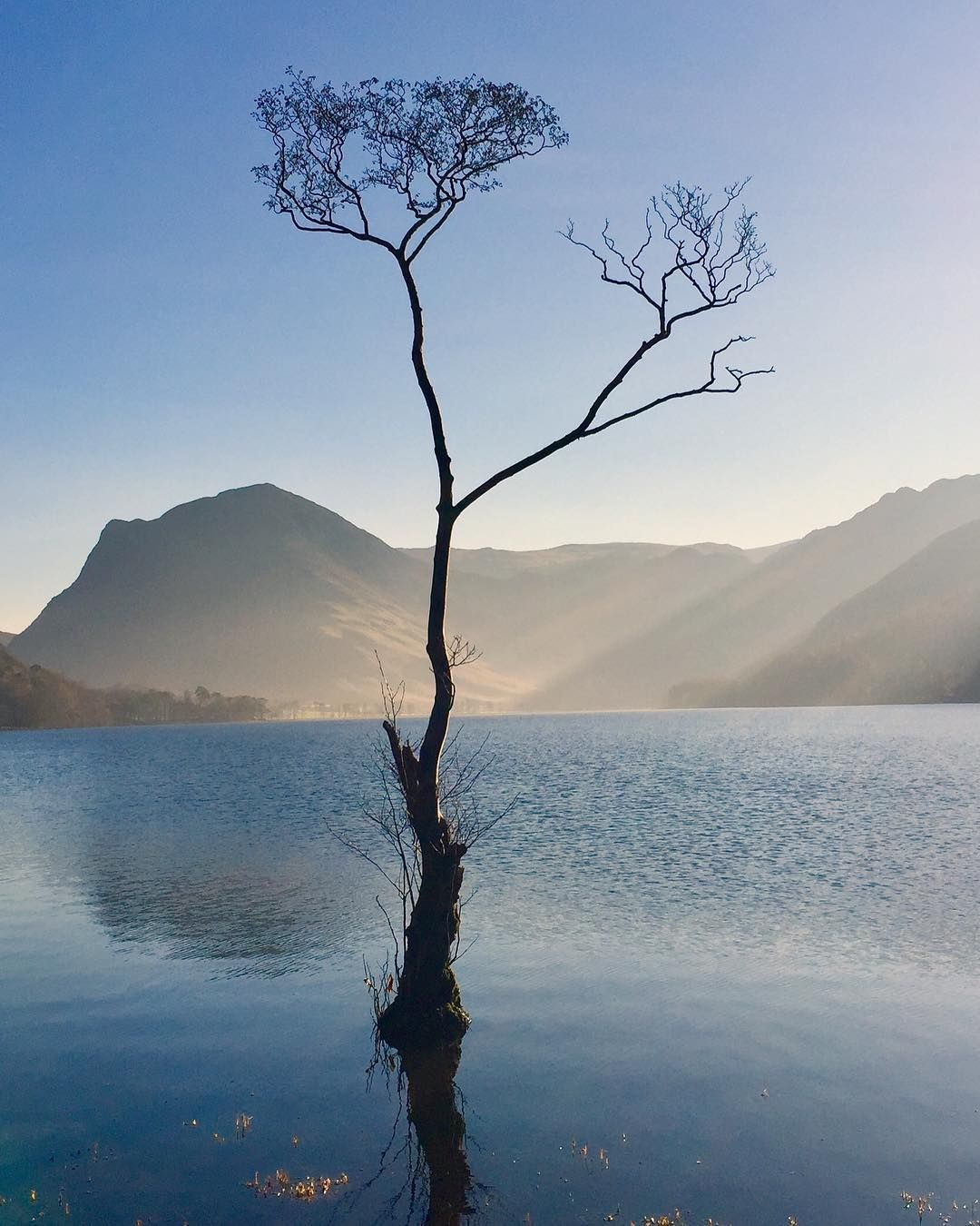 Richard Perry On Instagram That Well Known Tree In The Lake District Lakedistrict Buttermere Lakes Lake District Lake District England Visiting England