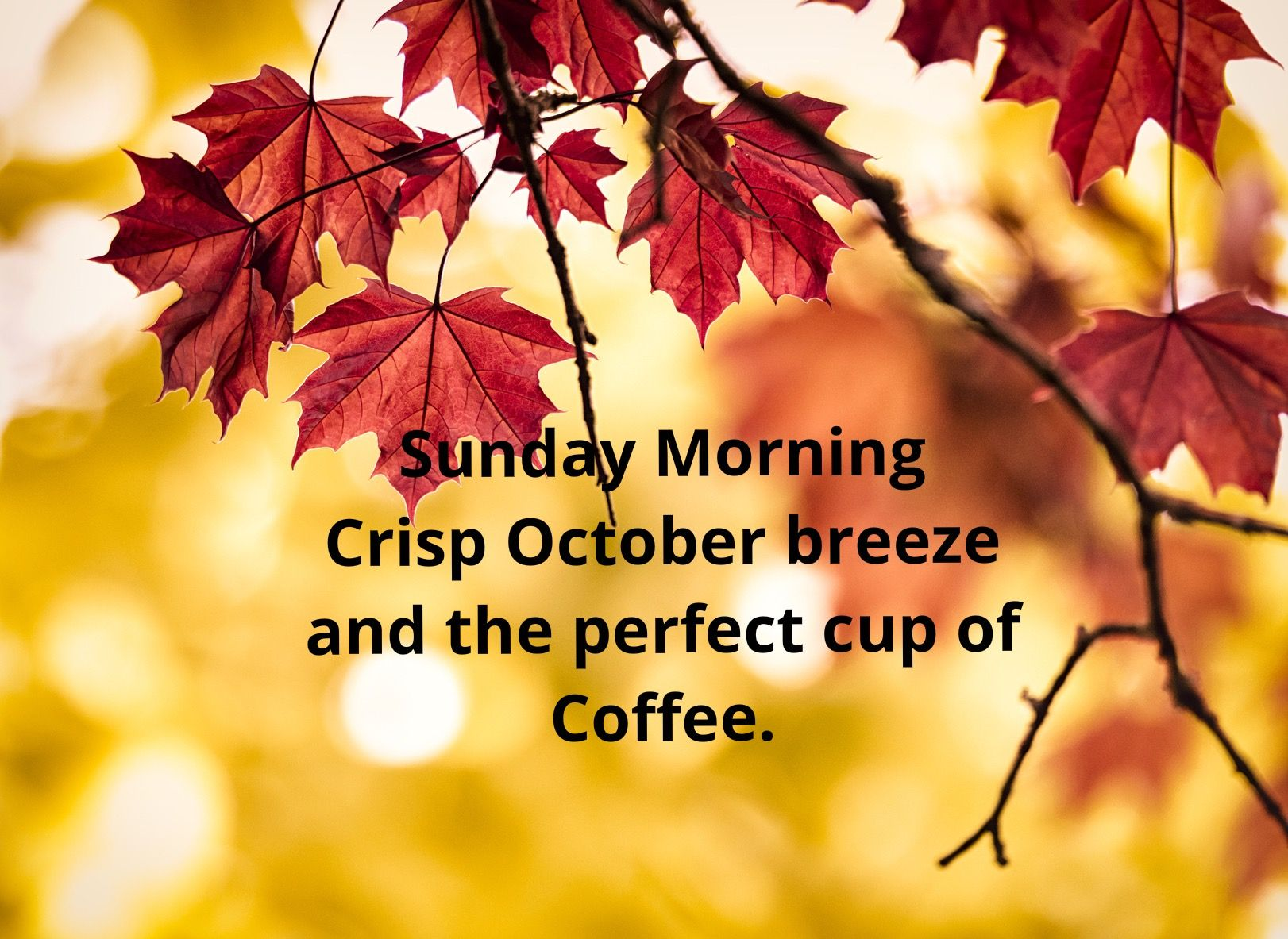 Happy Sunday Morning Misc Quotes Pinterest Quotes Lds Quotes