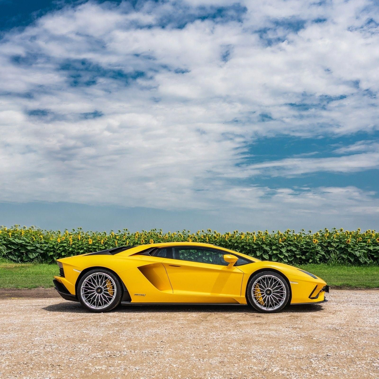 The Yellow Color Can Be Called Classy When We Talk About This Sportscar Would You Drive This Exquisite Sunflower I Lamborghini Aventador Classic Cars Car