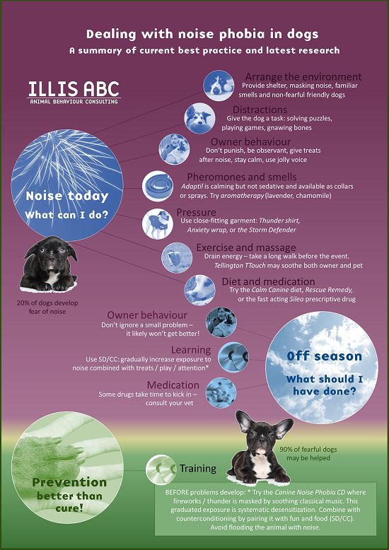 Reducing Fear Of Fireworks Dealing With Noise Phobia In Dogs