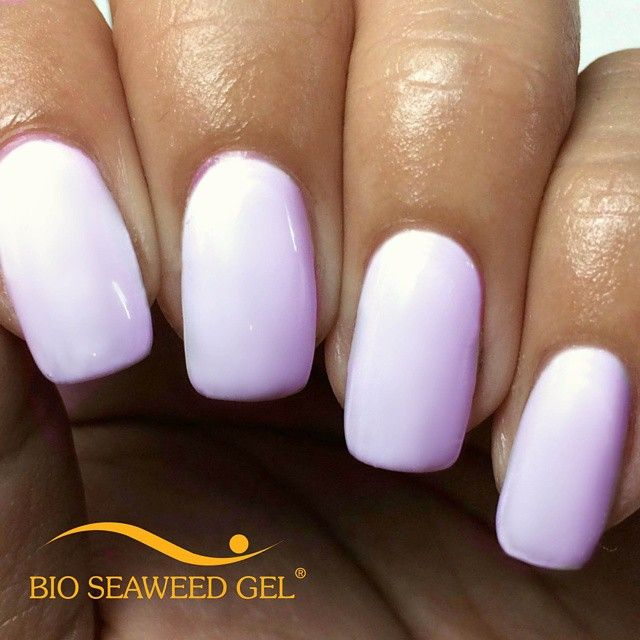 Bio Seaweed Gel Sugar Pale Off White With A Dust Of Lilac