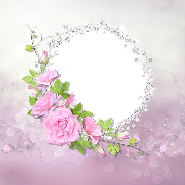 pink roses with diamonds transparent frame