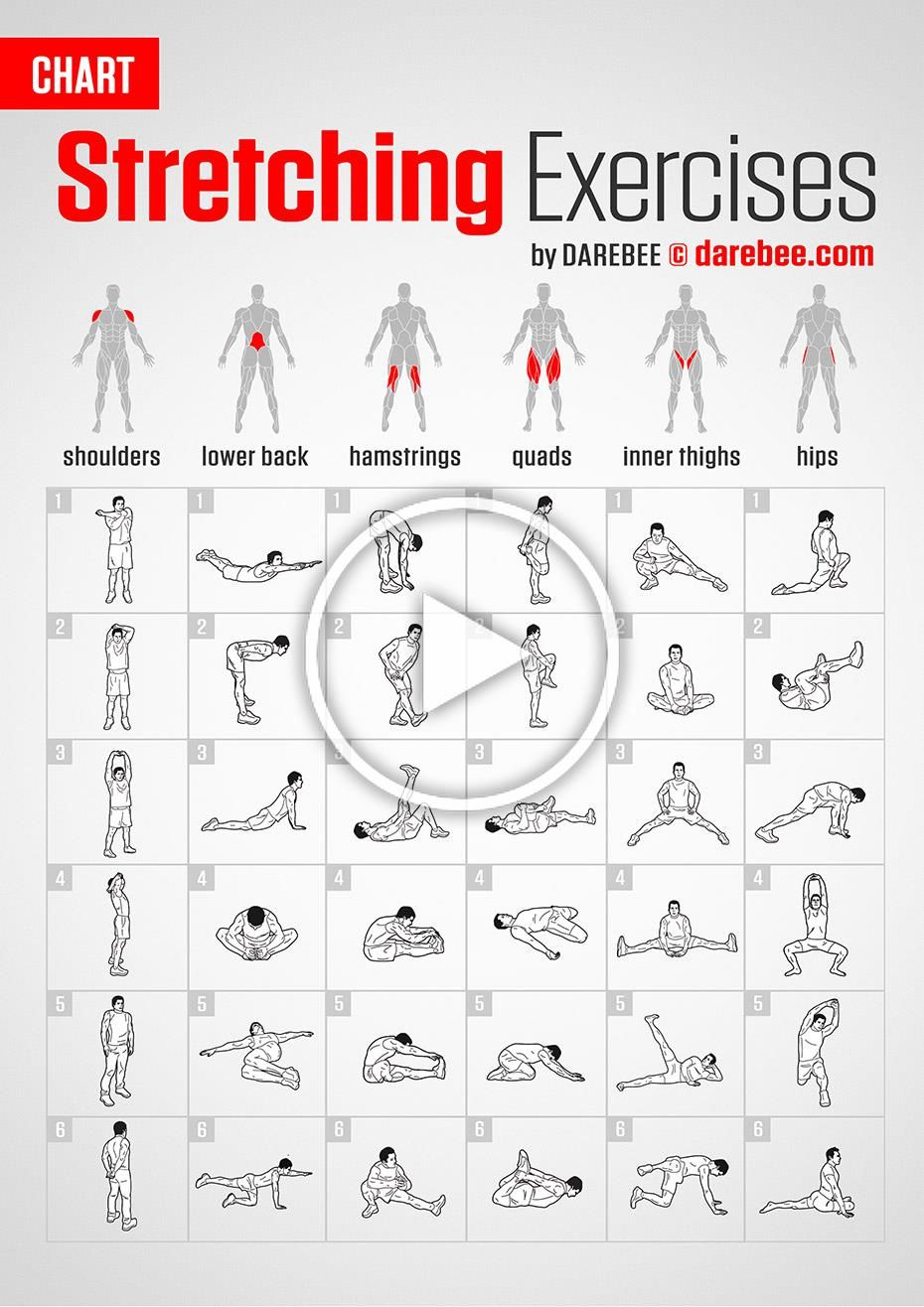 Stretching Exercises | Chart by DAREBEE #darebee #fitness #workout #stretching #fitnesschart