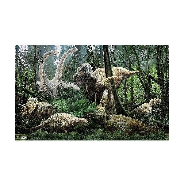 WallPops! National Geographic Dinosaurs Mural - Green, Multi (£29) ❤ liked on Polyvore featuring multi