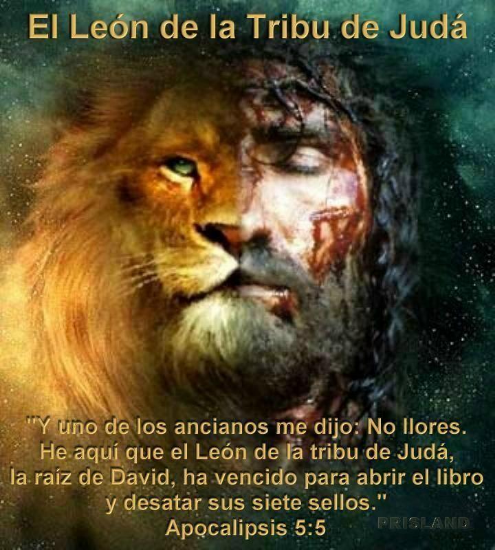 El león vencedor!   Dios   Pinterest   Te damos la, Jesucristo y Cristo