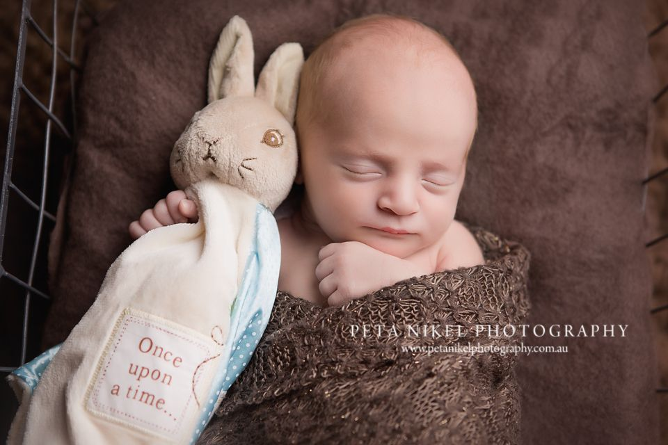 Hobart newborn photographer newborn session in studio baby boy with his bunny peter