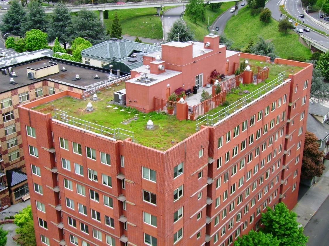 Hamilton east ecoroof city of portland bureau of environmental