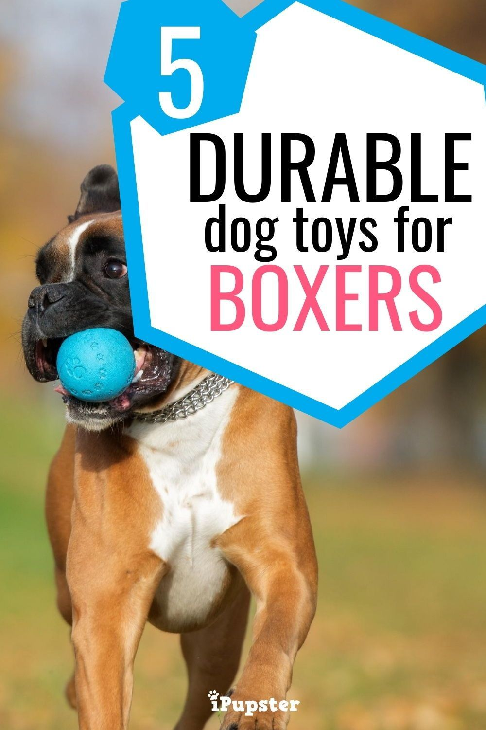 Best Dog Toys For Boxers 6 Durable Fun Boxer Dog Toys In 2020 Best Dog Toys Dog Toys Durable Dog Toys