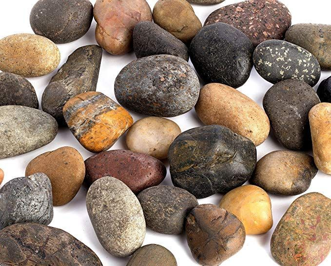Amazon.com : Supply Guru SG2584 River Rocks, Pebbles, Outdoor Decorative Stones, Natural Gravel, For Aquariums, Landscaping, Vase Fillers, Succulent, Tillandsia, Cactus pot, Terrarium Plants, 2 LB. Large Size. : Garden & Outdoor #riverrocklandscaping Amazon.com : Supply Guru SG2584 River Rocks, Pebbles, Outdoor Decorative Stones, Natural Gravel, For Aquariums, Landscaping, Vase Fillers, Succulent, Tillandsia, Cactus pot, Terrarium Plants, 2 LB. Large Size. : Garden & Outdoor #riverrocklandscaping