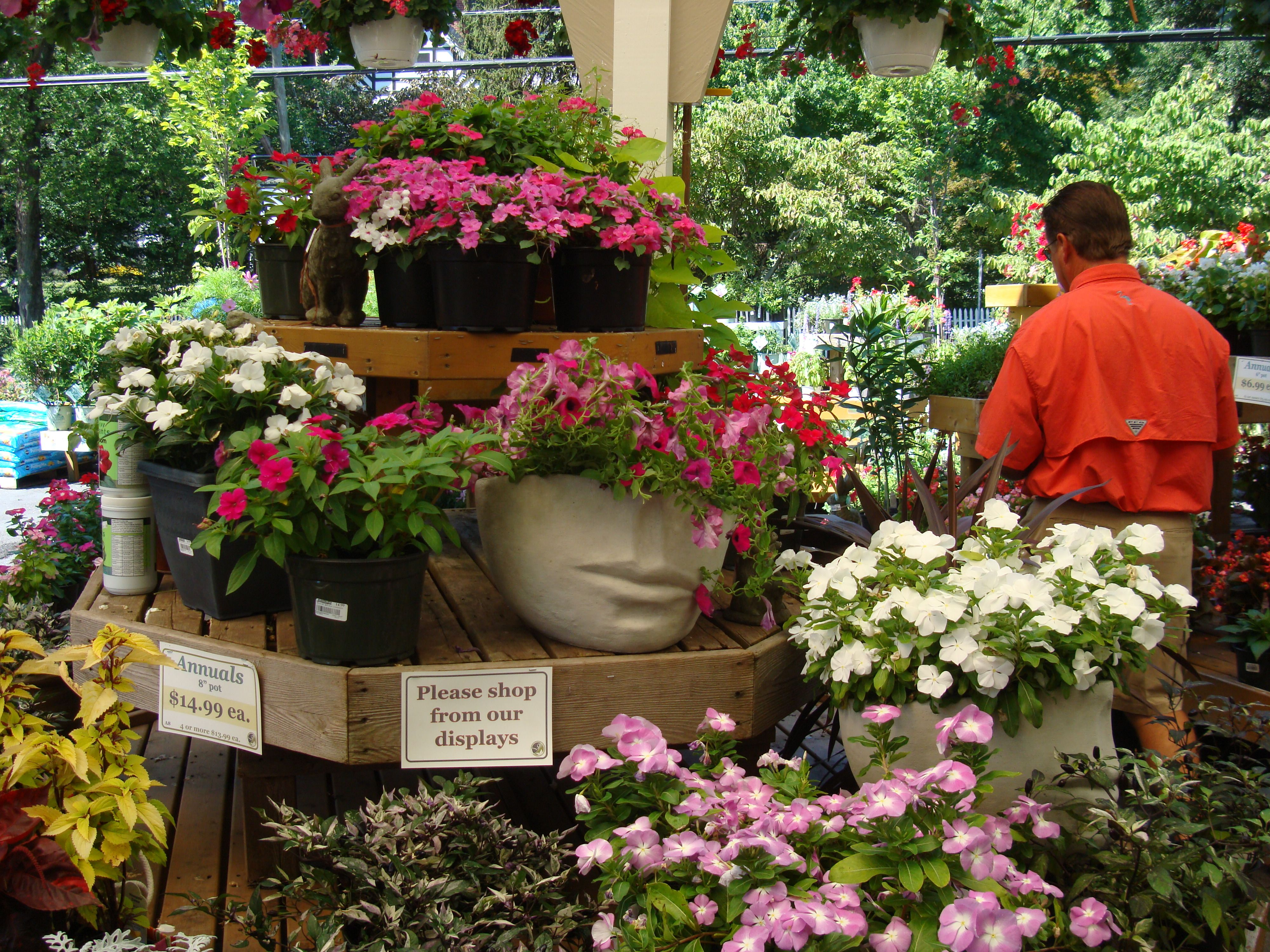 Johnson S Florist And Garden Centers Kensington Md With Images