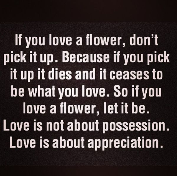 If You Love A Flower Dont Pick It Up Because If You Pick It Up