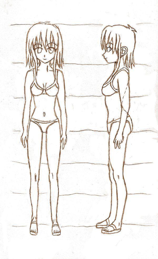 woman anatomy drawings - Yahoo Search Results | human anatomy ...