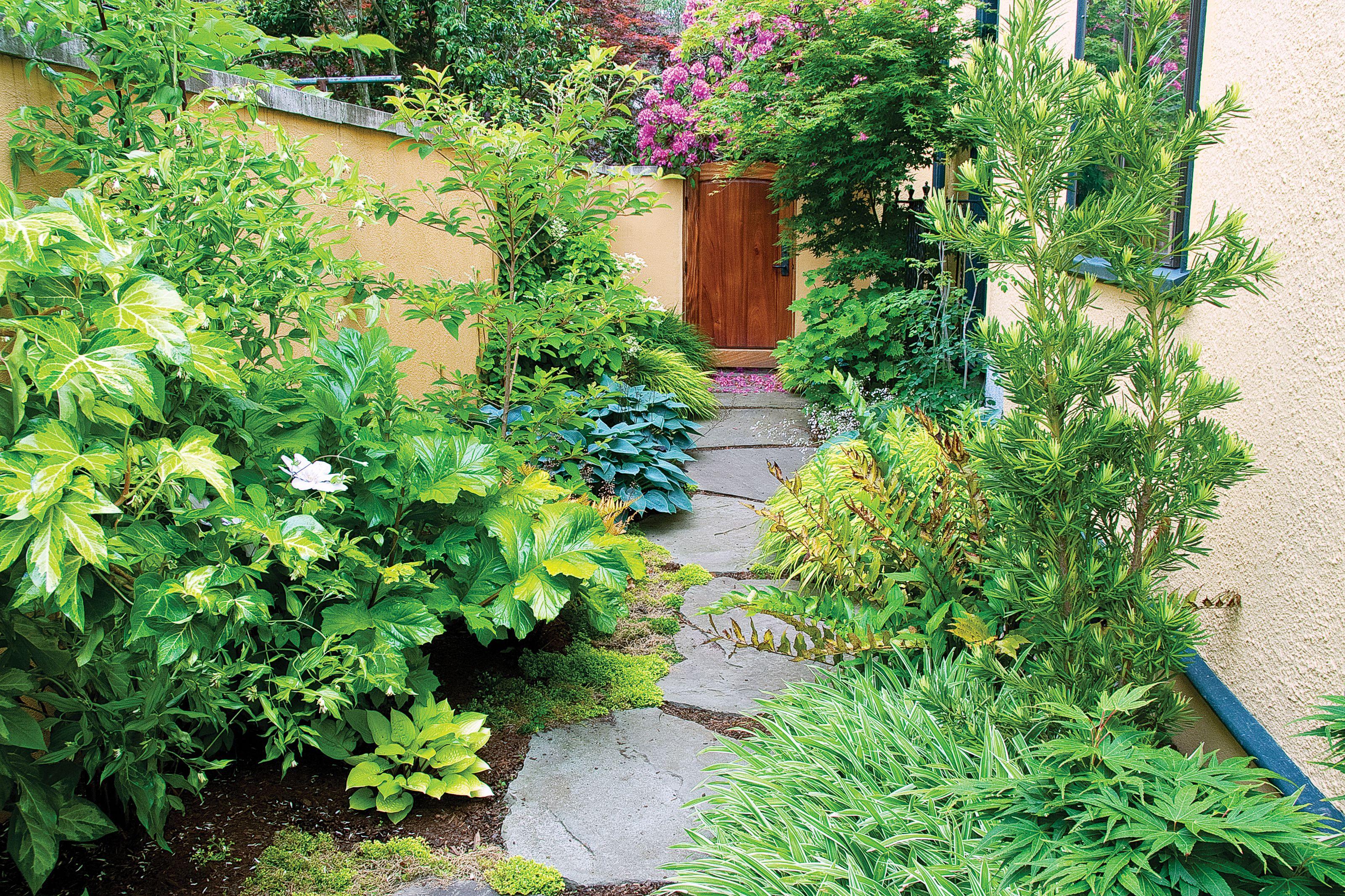 Side Yard Ideas Side Garden Garden Design Backyard Landscaping