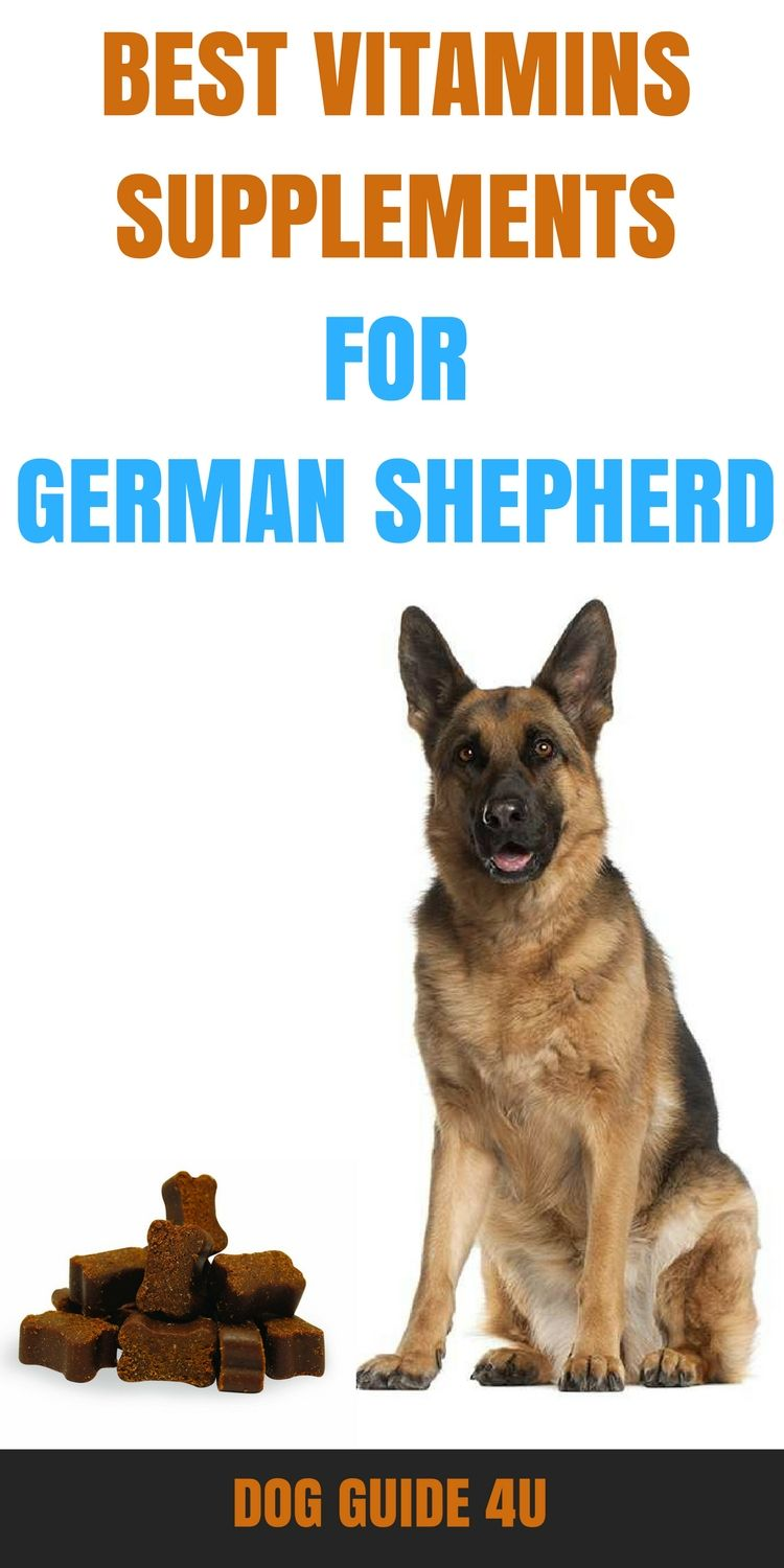 Best Vitamins Supplements For German Shepherd German Shepherd