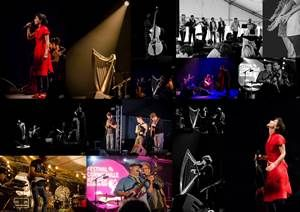 #cornouaille 2015 [Souvenirs de festival]