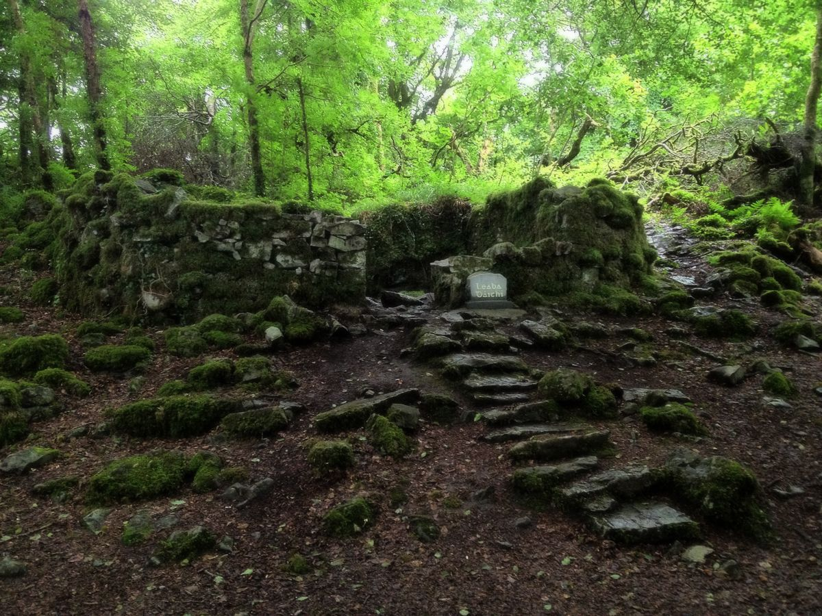 Forteresse Fée: Knockma Woods, Co Galway | Kit Irlande Voyage
