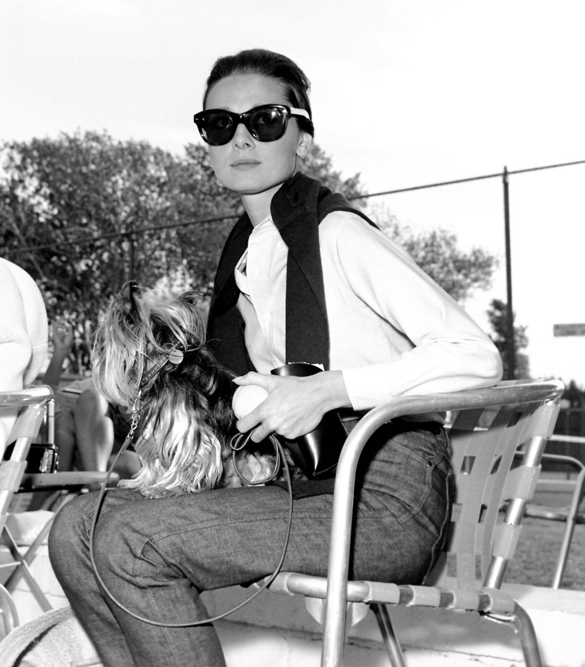 Yorkie haircuts and yorkie grooming resources rachael edwards - Audrey Hepburn With Her Yorkshire Terrier Mr Famous In Palm Springs California August