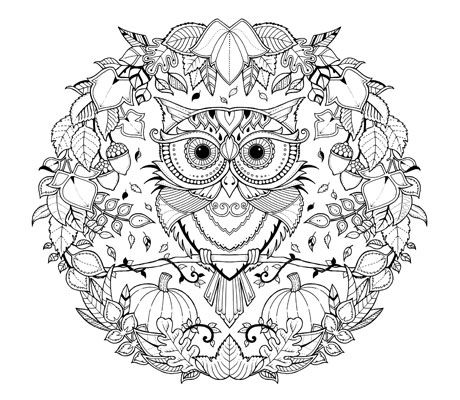 Printable Colouring Pages Colour With Canon Owl Coloring Pages Johanna Basford Coloring Book Enchanted Forest Coloring Book