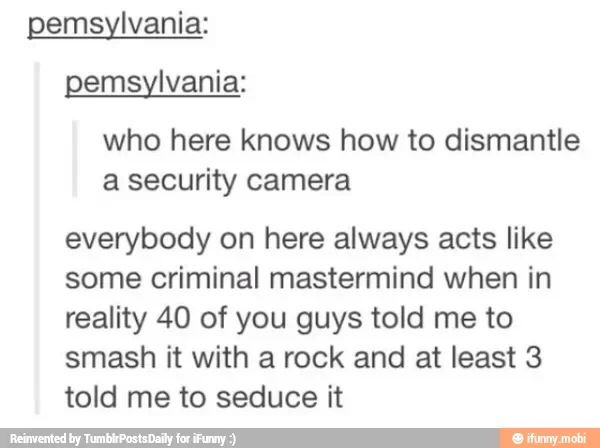 But true criminal masterminds ( like myself) know, you have to seduce a rock into breaking the camera. Duh.
