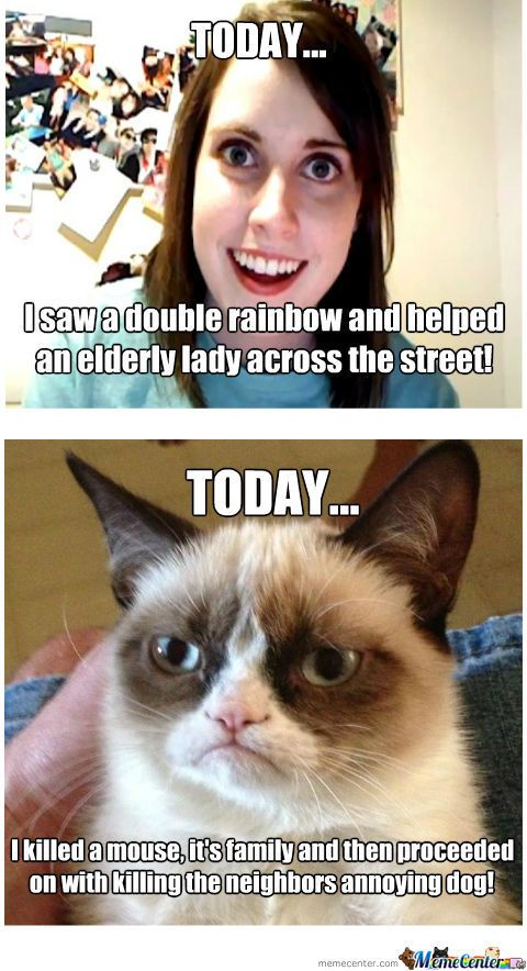 Grumpy Cat And Annoying Girl Grumpy Cat Funny Grumpy Cat