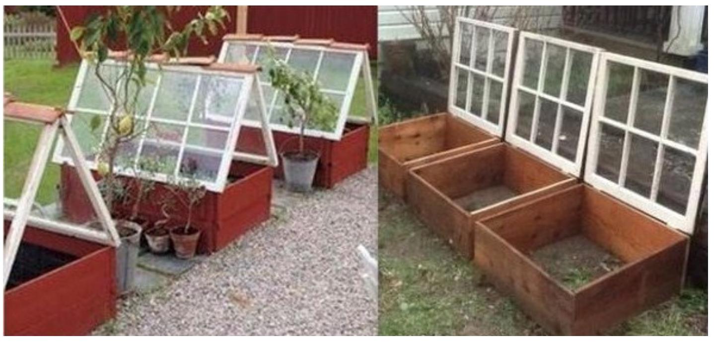 mini serres astuces de jardinage pinterest jardins jardinage et potager. Black Bedroom Furniture Sets. Home Design Ideas