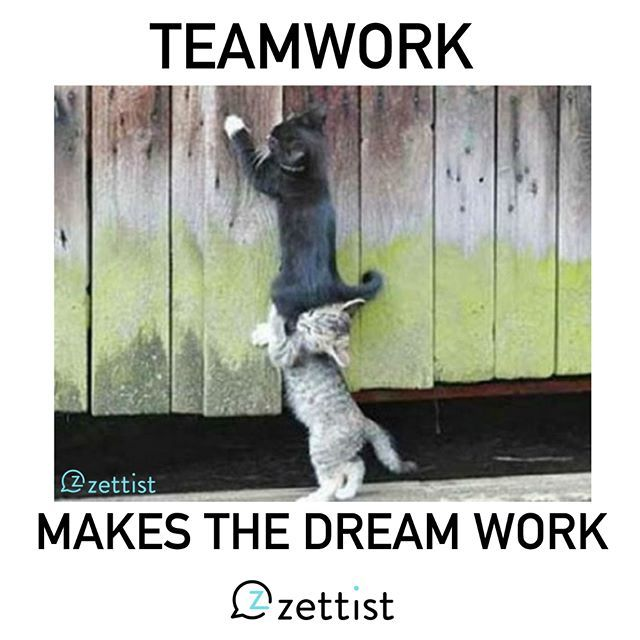 teamwork makes the dream work meme funny pictures to pin