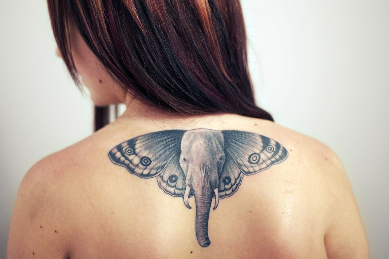 Simple, My mother has a butterfly tattoo, and my daddy has an elephant.<3Done by Mark Jeffrey, High Tides Tattoos, NB, Canada.
