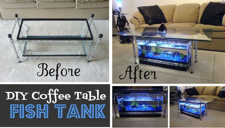 DIY Coffee Table Aquarium TheWHOot Home decor Pinterest