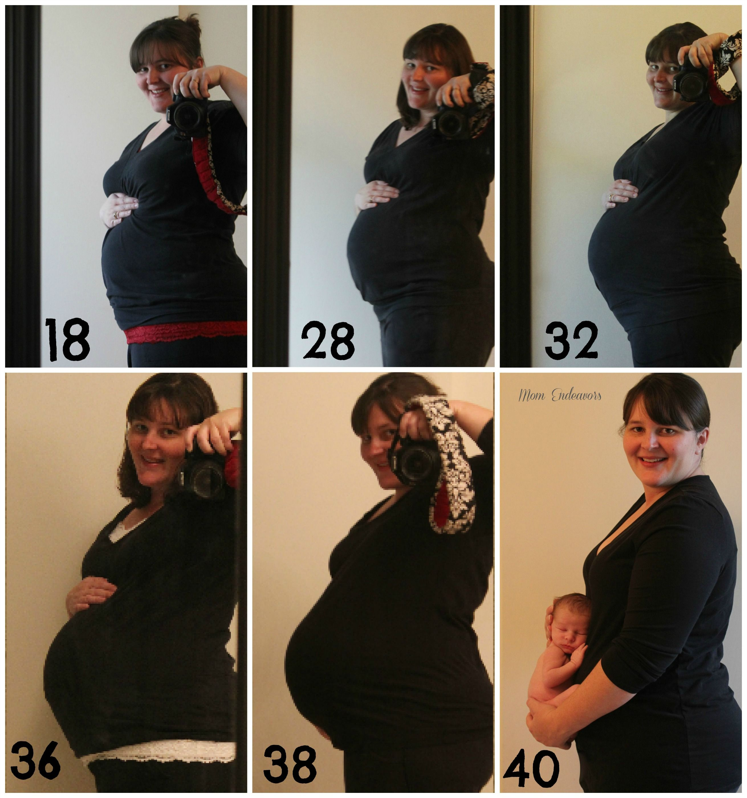plus-size pregnancy | pregnancy & postpartum belly changes {belly