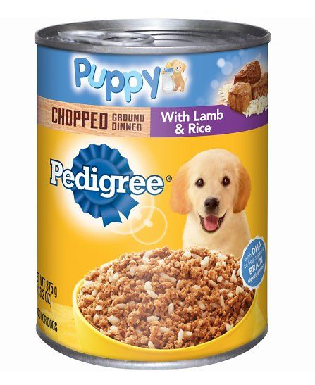 Help Your Puppy Grow Up Happy And Healthy With The Pedigree Puppy