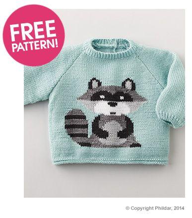 Love this! Phildar Raccoon Jumper Pattern - free to ...