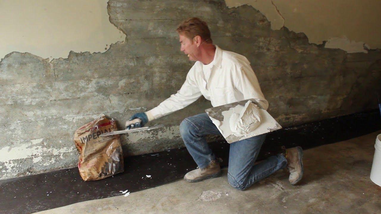 Mold or mildew in your home in 2020 Mildew, Molding