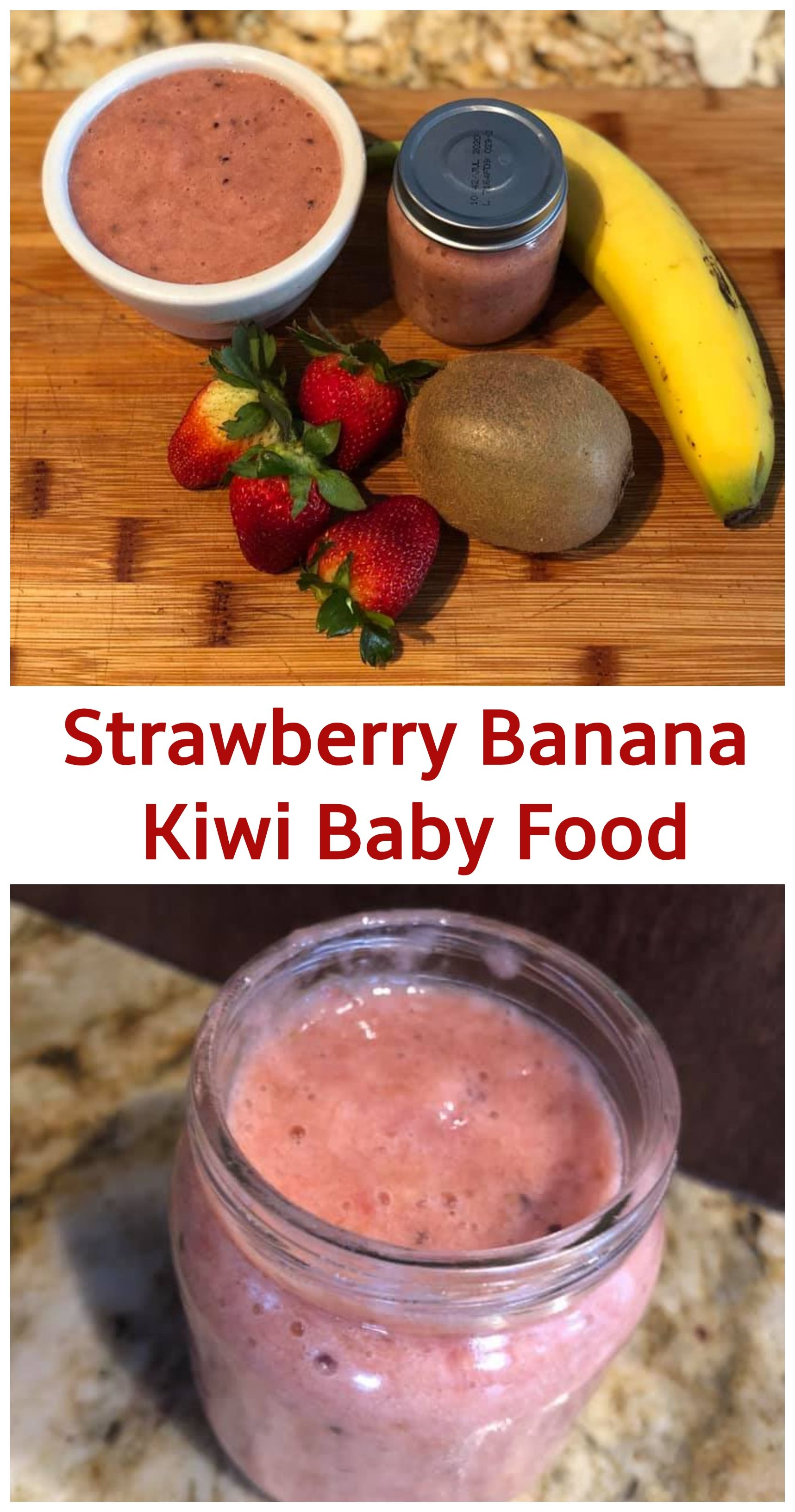 Pureed Food Recipes For Adults How To Make