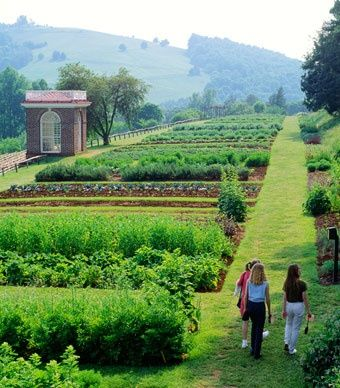 From oval flowerbeds to winding paths, Jefferson designed every fruit, vegetable, and flower garden at Monticello over two centuries ago. (David Lyons / Alamy)