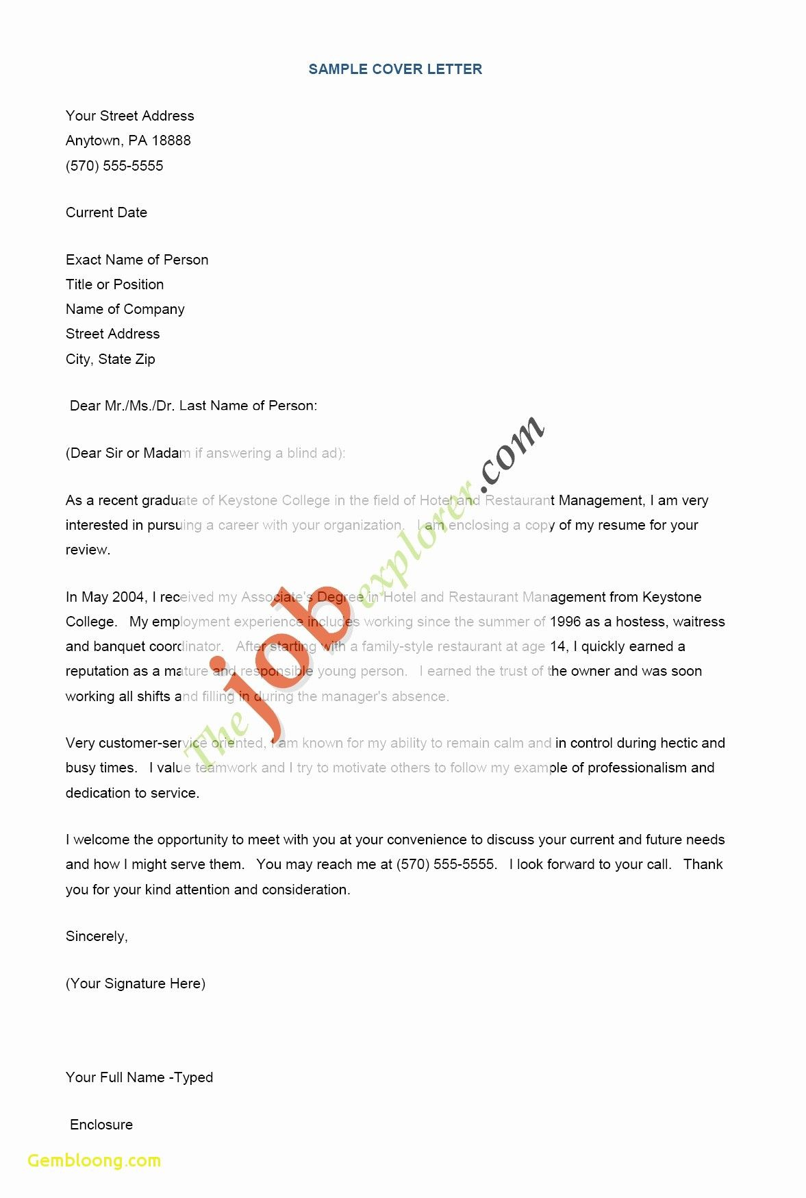 Cover Letter Thank You for the Opportunity Cover Letter Thank You