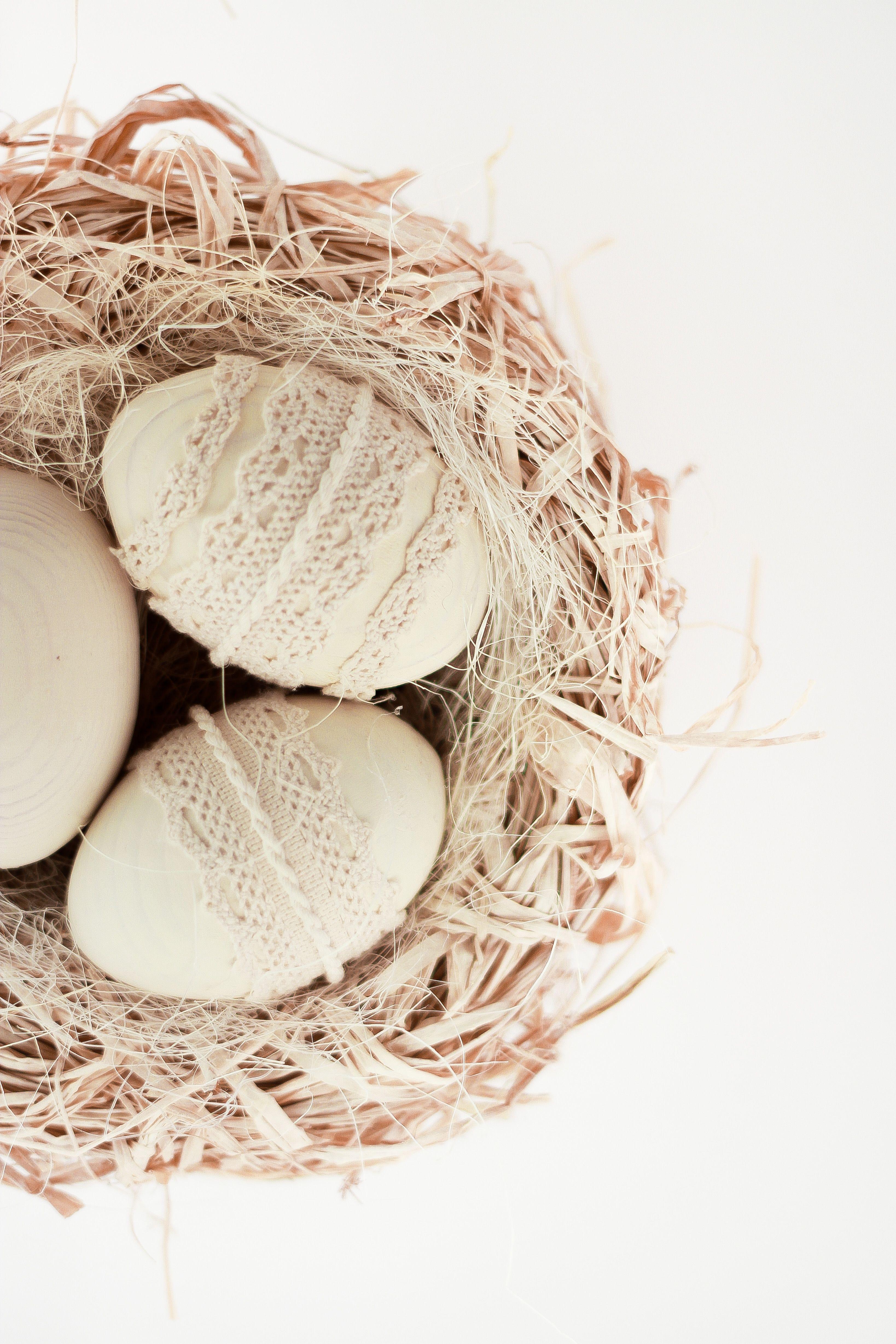 Easter eggs door hanger bird nest with three easter eggs cottage easter eggs door hanger bird nest with three easter eggs cottage chic decor negle Images