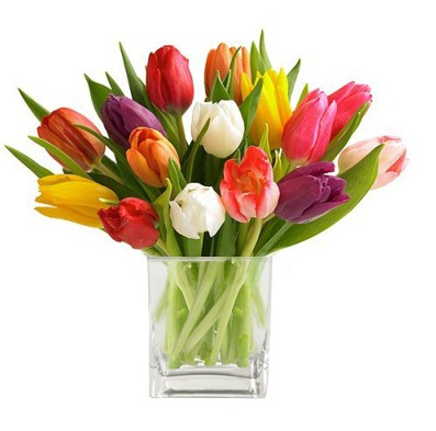 Cube Of Mixed Tulips Tulip Centerpiece Tulips Flowers Tulip Bouquet