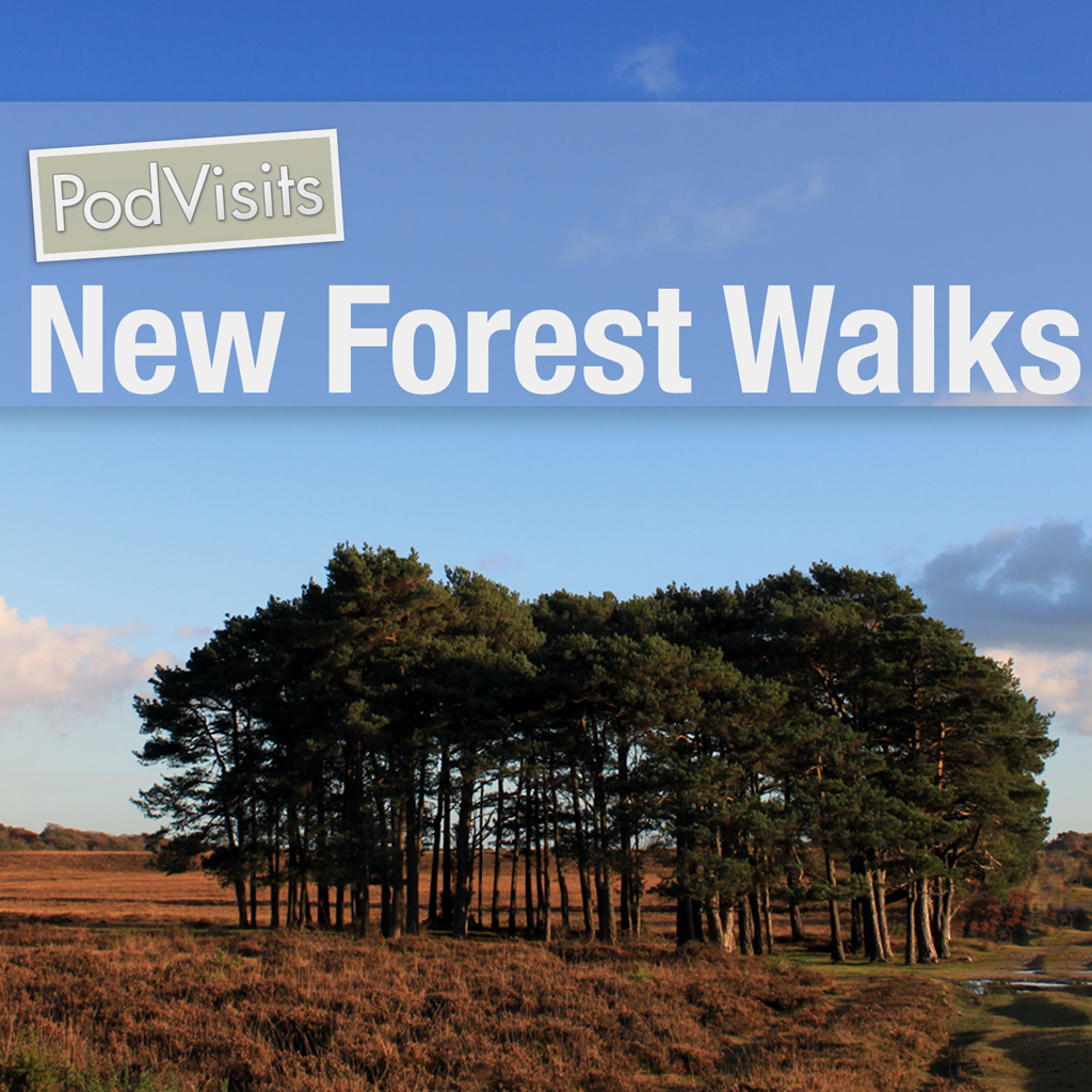 iPhone app with walking routes and maps to explore the New