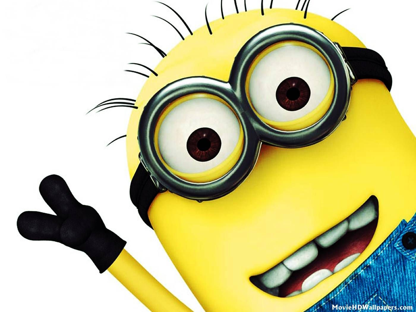 17 Best Images About Minions On Pinterest Purple Minions