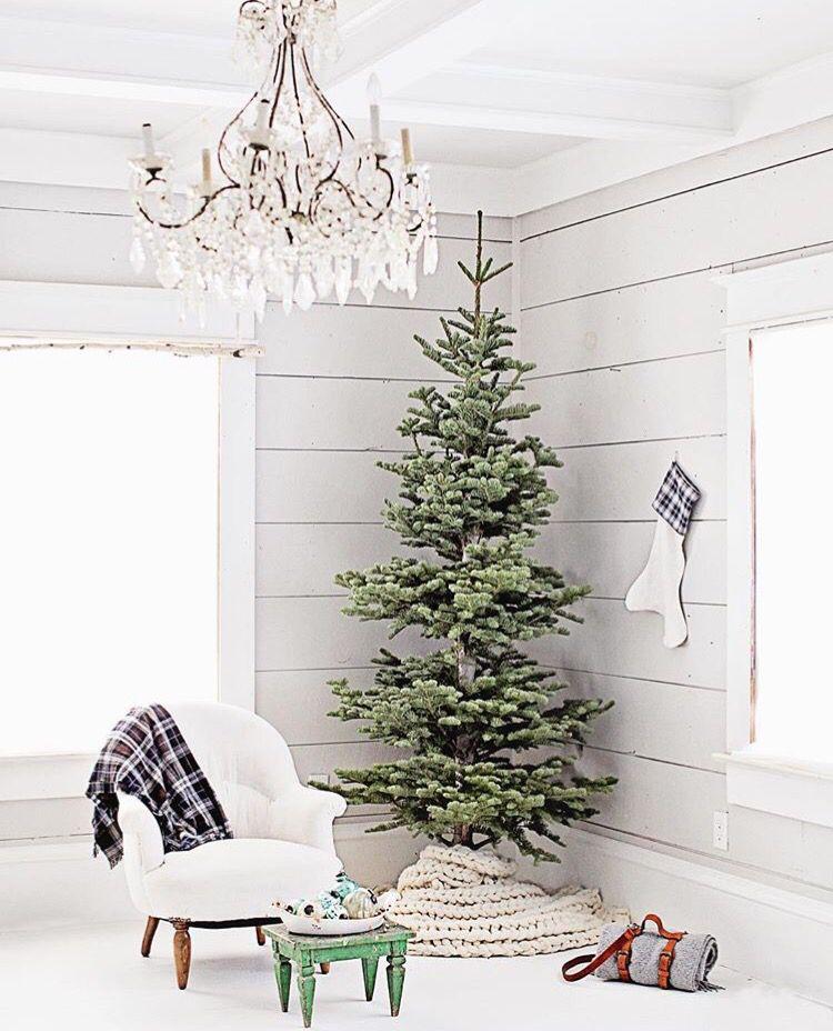 Naked Tree Christmas decor 2017
