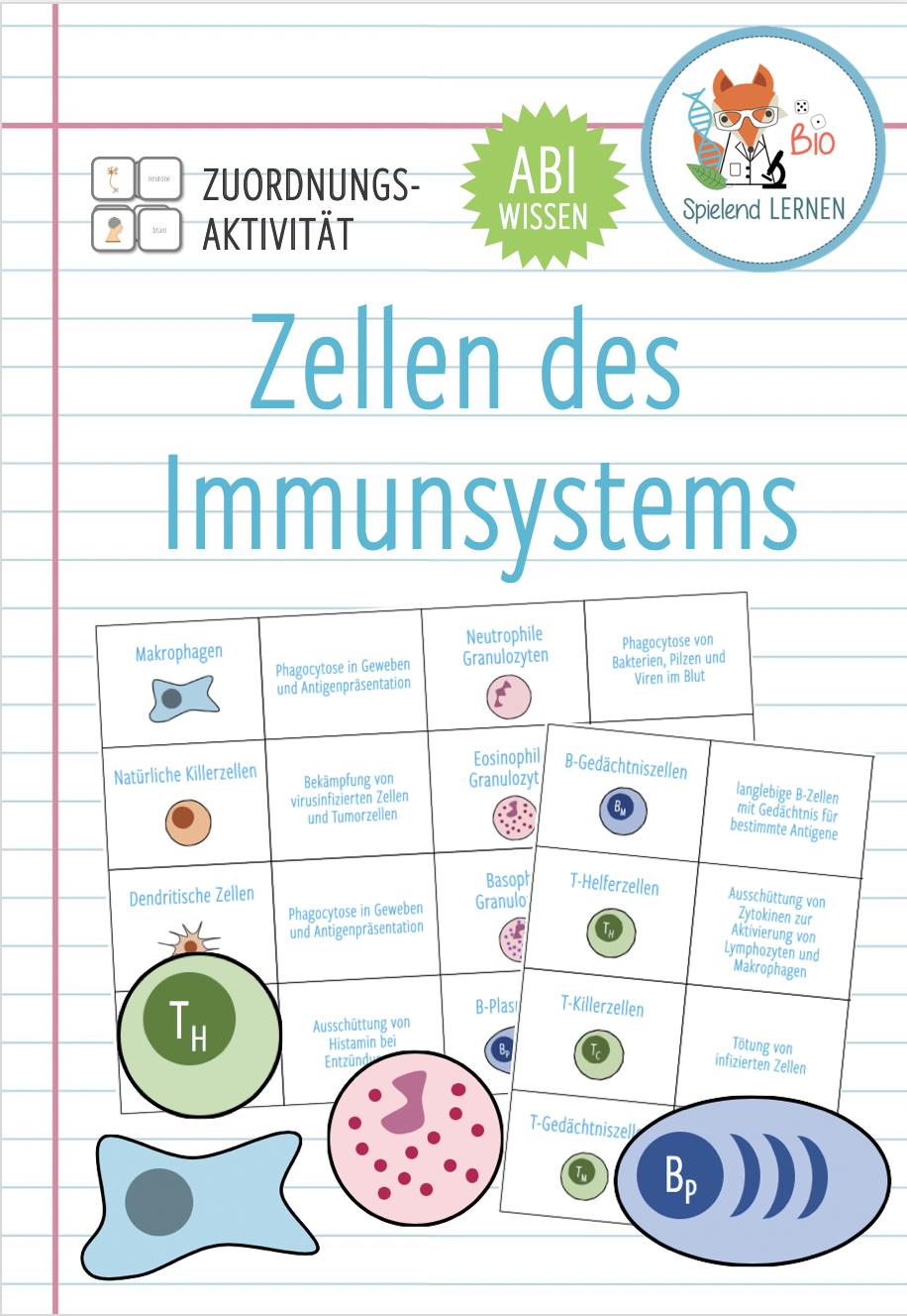 Zellen des Immunsystems– Zuordnungsaktivität / Paare Finden Spiel ...