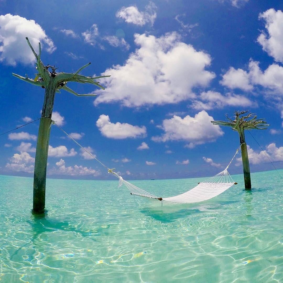 Ab In Die Hangematte Das Leben Geniessen Malediven Mehr Zu Den Themen Reisen Urlaub Findest Du Auf Unseren Boards Maldives Photo Science And Nature