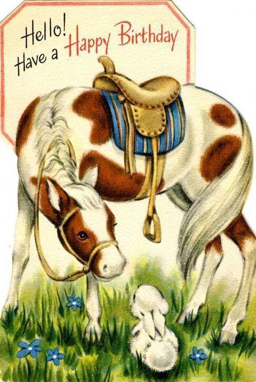 Vintage Birthday Cards Horse Cards Vintage Cards
