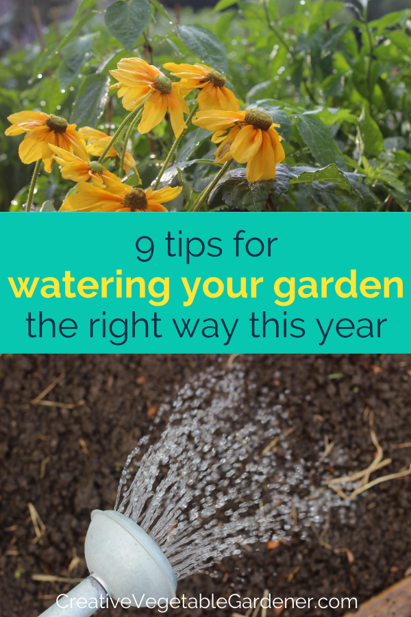 Secrets To Watering Your Vegetable Garden The Right Way In 400 x 300