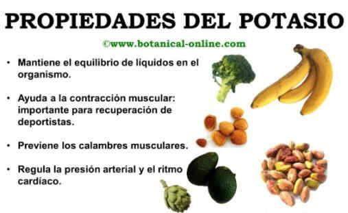 Propiwdades del potasio y contraindicaciones vida sana for Potasio para plantas